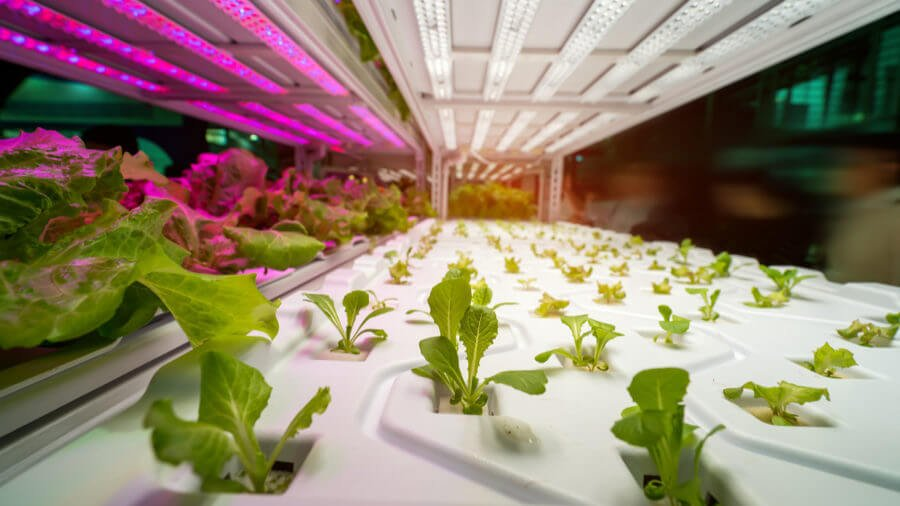recent innovations in agriculture