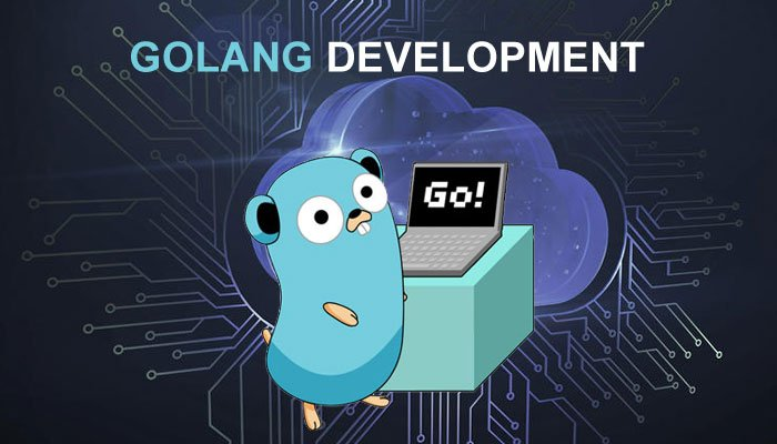 GoLang Development companies usa india
